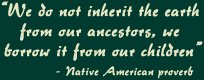 We do not inherit the earth from our ancestors, we borrow it from out children - Native American proverb