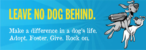 Leave No Dog Behind.  Make a difference in a dog's live.  Adopt.  Foster.  Give.  Rock on.