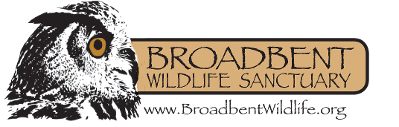 Broadbent Wildlife Sanctuary, Logo