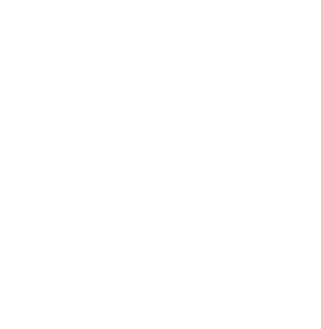 Community Accredited Foundation. Excellence, Accountability, Impact. TM